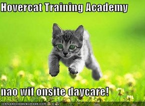 Hovercat Training Academy  nao wif onsite daycare!