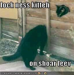 lock ness kitteh  on shoar leev
