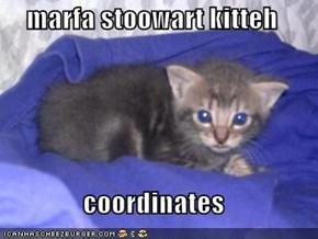 marfa stoowart kitteh  coordinates
