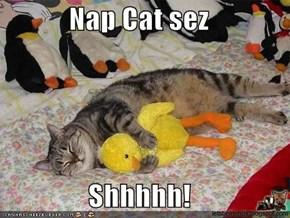 Nap Cat sez  Shhhhh!