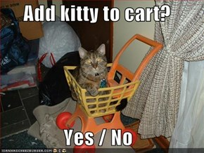 Add kitty to cart?  Yes / No