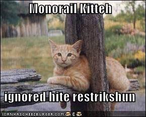 Monorail Kitteh  ignored hite restrikshun