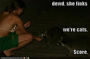 dewd, she finks we're cats. Score.