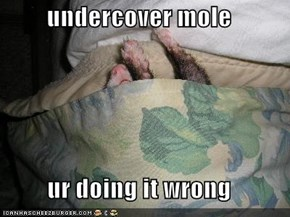 undercover mole  ur doing it wrong