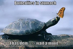 Butterflies in stumach  I has dem  - - - wait a minit...