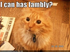 I can has fambly?