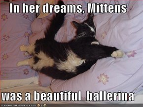 In her dreams, Mittens   was a beautiful  ballerina