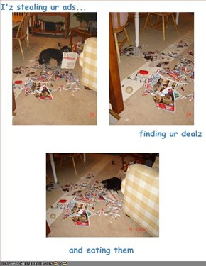 I'z stealing ur ads... finding ur dealz  and eating them