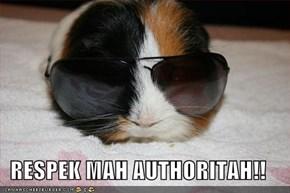 RESPEK MAH AUTHORITAH!!