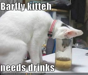 Barfly kitteh  needs drinks