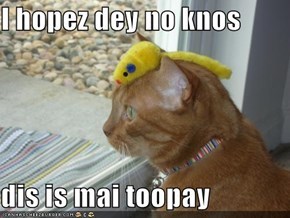 I hopez dey no knos   dis is mai toopay