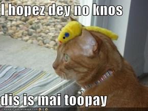 I hopez dey no knos   dis is mai toopay