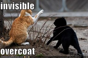 invisible   overcoat