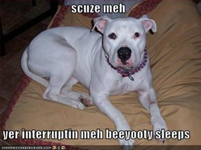 scuze meh  yer interruptin meh beeyooty sleeps