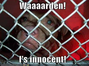 Waaaarden!  I's innocent!