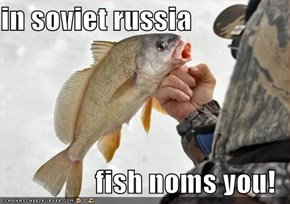 in soviet russia  fish noms you!