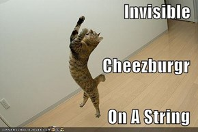 Invisible Cheezburgr On A String