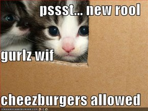 pssst... new rool gurlz wif cheezburgers allowed