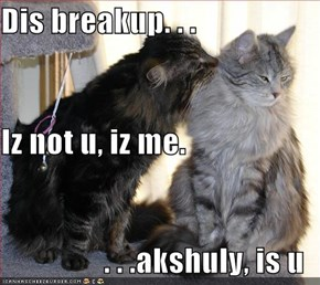 Dis breakup. . . Iz not u, iz me.  . . .akshuly, is u