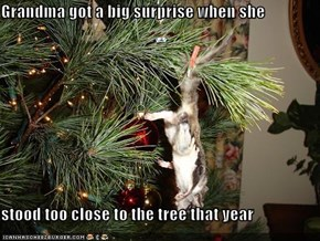 Grandma got a big surprise when she  stood too close to the tree that year