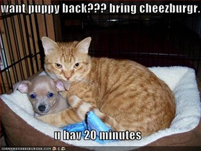 want puppy back??? bring cheezburgr.  u hav 20 minutes
