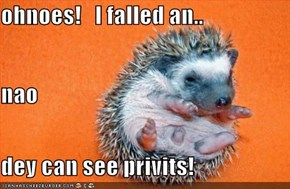 ohnoes!   I falled an.. nao dey can see privits!