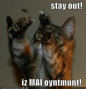 stay out!  iz MAI oyntmunt!