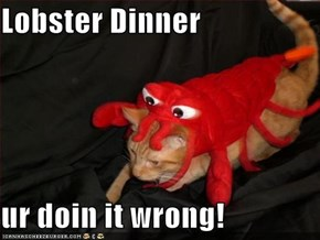Lobster Dinner  ur doin it wrong!