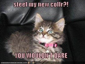 steel my new collr?!  YOU WOULDN'T DARE