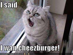 I said  I wan cheezburger!