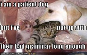 i am a patient dog                   but i've                              put up with their bad grammar long enough