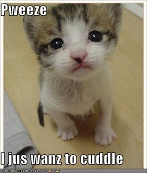 Pweeze  I jus wanz to cuddle