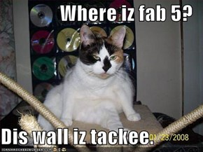 Where iz fab 5?  Dis wall iz tackee.