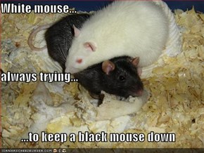 White mouse... always trying... ...to keep a black mouse down