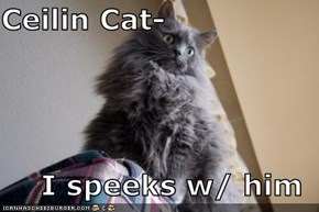 Ceilin Cat-  I speeks w/ him