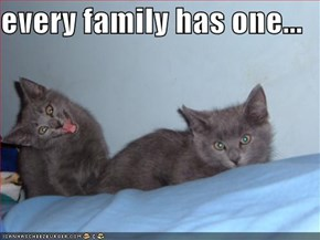 every family has one...