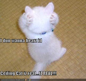 I dun wanna hearz id Ceiling Cat iz real...IZ REAL!!!