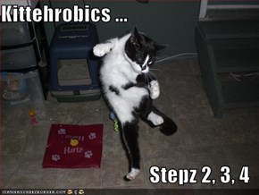 Kittehrobics ...  Stepz 2, 3, 4