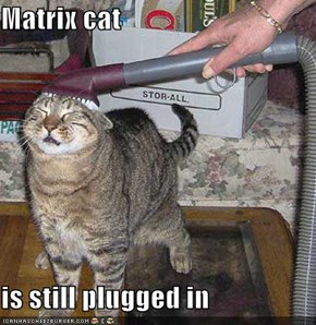 Matrix cat   is still plugged in