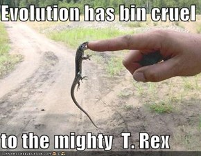 Evolution has bin cruel  to the mighty  T. Rex