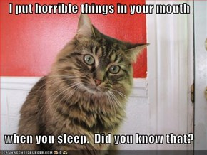 I put horrible things in your mouth  when you sleep.  Did you know that?