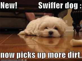 New!             Swiffer dog :  now picks up more dirt.