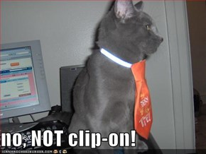 no, NOT clip-on!