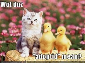 """Wot duz  """"adoptid"""" mean?"""
