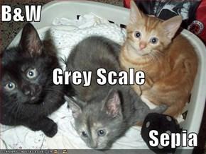 B&W Grey Scale Sepia