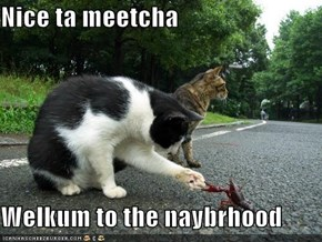 Nice ta meetcha  Welkum to the naybrhood