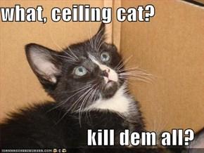 what, ceiling cat?  kill dem all?