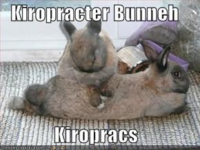 Kiropracter Bunneh  Kiropracs