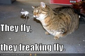 They fly, they freaking fly.