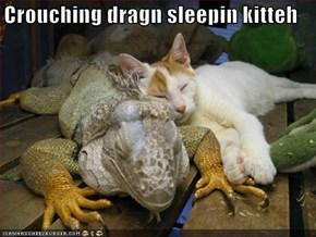 Crouching dragn sleepin kitteh